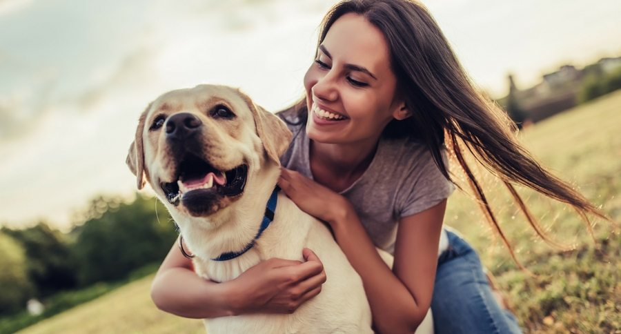 Does Your Dog Truly Impact Your Life? Be The Best Owner!